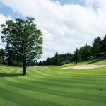 ゴルフで夏バテを防ぐためのポイント!事前対策も心がけよう